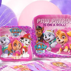 Paw Patrol Girl's Birthday Party Supplies