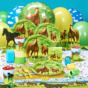 Wild Horses General Birthday Party Supplies